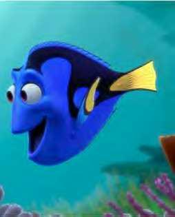 pacific blue tang dory  Resulta que Dori se llama...
